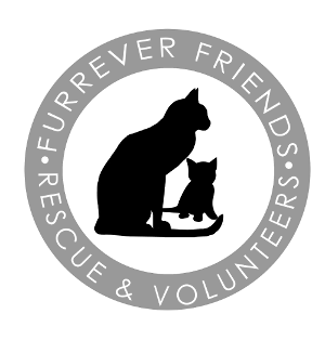 Furrever Friends Rescue